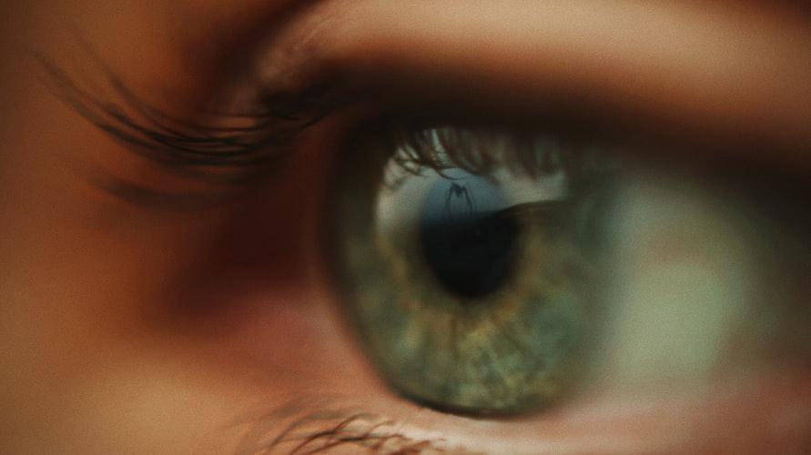 コンタクトレンズを装着した眼の画像